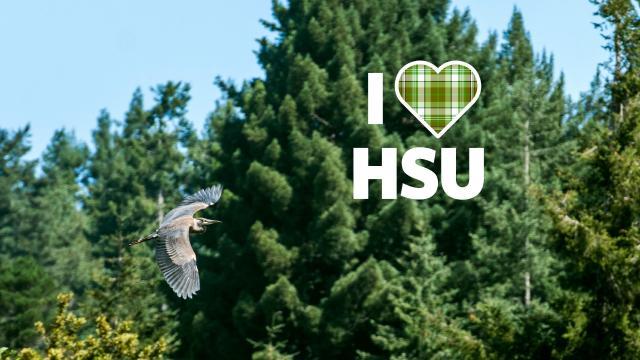 I love HSU Bird
