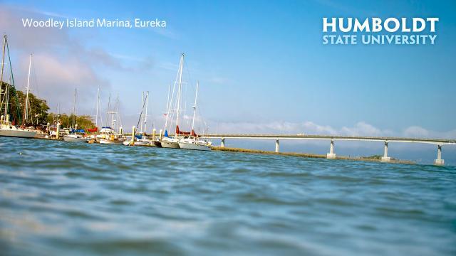 Marina Samoa bridge with HSU logo