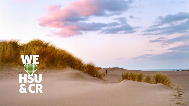 We HSU & CR dunes