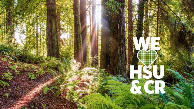 We HSU & CR forest